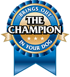 The-Champion-Logo